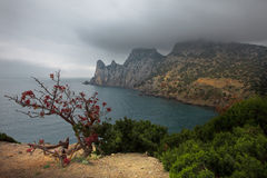 Crimea. Gloomy morning Stock Image