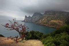 Crimea. Gloomy morning Stock Image