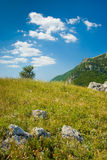 Crimea mountains. Summer mountain landscape in Crimea, Ukraine Stock Images