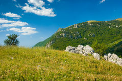 Crimea mountains. Summer mountain landscape in Crimea, Ukraine Stock Photo