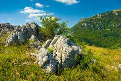 Crimea mountains. Summer mountain landscape in Crimea, Ukraine Royalty Free Stock Photo