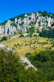 Crimea mountains Royalty Free Stock Photo