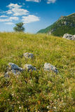 Crimea mountains Stock Images