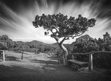 Crimea national park. Black and white Stock Images