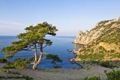 Crimea. New Light. Kings beach and mount Karaul-Oba, Royalty Free Stock Images