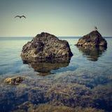Crimea seascape Stock Images