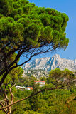 Crimea, view of Mount Ai-Petri. Summer day view  of Mount Ai-Petr rom Vorontsov gardeni, Crimea Royalty Free Stock Images