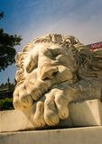 Crimea Vorontsov Palace Sleeping Marble Lion Sculpture. Crimea Vorontsov palace closeup large head of old marble Greek mythological sleeping lion sculpture in royalty free stock image