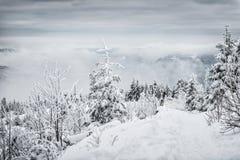 crimea wieczór podwyżki portreta promienie sun Ukraine zima Zdjęcie Stock