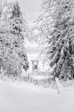 crimea wieczór podwyżki portreta promienie sun Ukraine zima Zdjęcia Royalty Free