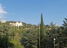 Crimea, Yalta. View of ancient park, summer. Crimea, Yalta. View of ancient park royalty free stock image