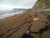 The Crimean coast. Crimean coast near Balaclava, Sevastopol, Ukraine Royalty Free Stock Image