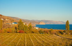 Crimean landscape Royalty Free Stock Photography