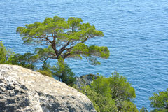 Crimean landscapes Stock Images
