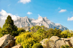 Crimean mountains. With green trees and blue sky Stock Photos