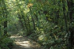 Crimean nature. Tsars path Stock Photo
