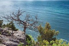 Crimean Peninsula,  Black Sea Coast Stock Image