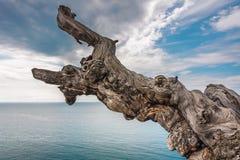 Crimean Peninsula,  Black Sea Coast Stock Photo