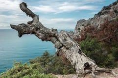 Crimean Peninsula,  Black Sea Coast Royalty Free Stock Image