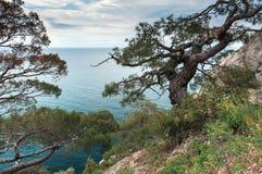 Crimean Peninsula,  Black Sea Coast Stock Images
