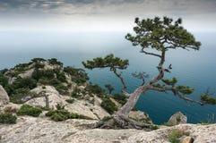 Crimean Peninsula,  Black Sea Coast Royalty Free Stock Photography