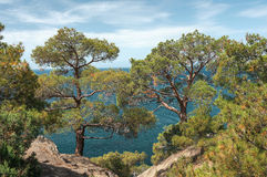 Crimean Peninsula,  Black Sea Coast Stock Photos