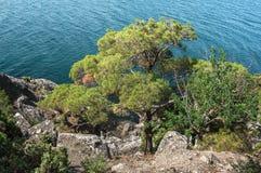 Crimean Peninsula,  Black Sea Coast Royalty Free Stock Photo