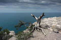 Crimean Peninsula,  Black Sea Coast Stock Photography