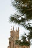 Crimean pine tree and Swallow Nest castle, Crimea Stock Images