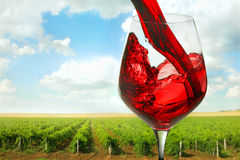 Crimean wine Royalty Free Stock Images