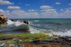 Crimeia apaixonado e delicada imagem de stock royalty free