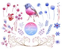 Crimson blue collection. Natural cliparts for wedding design, artistic creation. Watercolor collection of crimson and blue nature elements. Clipart consist of Royalty Free Stock Image