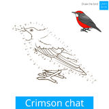 Crimson chat bird learn to draw vector Royalty Free Stock Photography