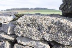 Crinoids fósseis na parede do campo Foto de Stock