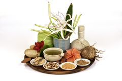 Face mask with Crinum asiaticum ,green leaves gel and Thai herb have property medicine. Crinum asiaticum ,green leaves gel and Thai herb have property medicine royalty free stock photo