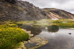 Crique chaude dans la vallée Landmannalaugar, Islande Images stock