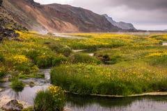 Crique chaude dans la vallée Landmannalaugar, Islande Image stock