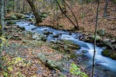 Crique courue par hurlement, Jefferson National Forest, Etats-Unis photo stock