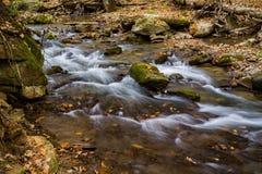 Crique courue par hurlement, Jefferson National Forest, Etats-Unis - 3 photographie stock libre de droits