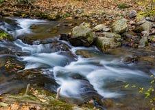 Crique courue par hurlement, Jefferson National Forest, Etats-Unis - 4 photographie stock