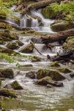 Crique courue par hurlement, Jefferson National Forest, Etats-Unis images stock