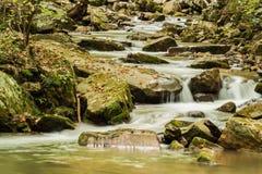 Crique courue par hurlement, Jefferson National Forest, Etats-Unis photographie stock libre de droits