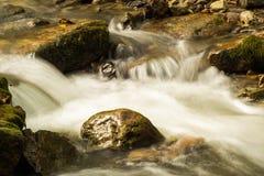 Crique courue par hurlement, Jefferson National Forest, Etats-Unis image stock