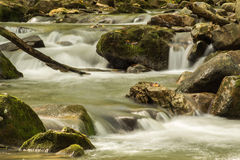 Crique courue par hurlement, Jefferson National Forest, Etats-Unis photos stock