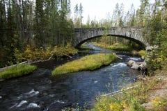 Crique d'écrevisses dans Yellowstone images libres de droits