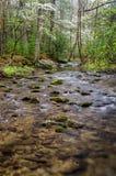 Crique d'Abrams, crique de Cades, Great Smoky Mountains Photographie stock