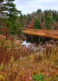 Crique d'Adirondack Photos libres de droits