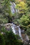 Crique d'Anna Ruby Falls Photo stock