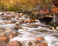 Crique d'automne Photos stock