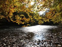 Crique d'automne photo libre de droits